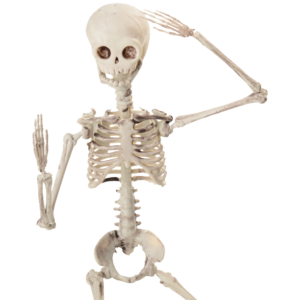small-skeleton